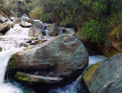 Ancascocha Trail: giorno 2 Trek a Machu Picchu tra i più belli e alternativi
