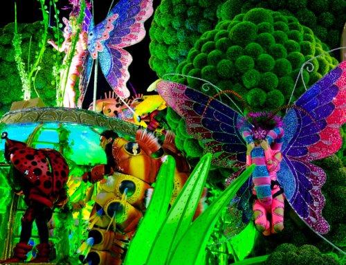 Carnevale Salvador: il più grande del mondo Tutte le informazioni per partecipare al carnevale più grande del mondo