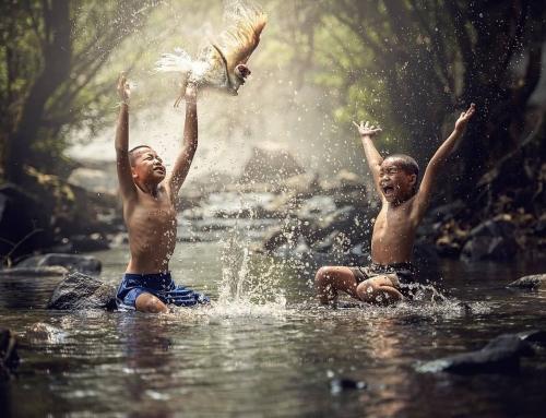 Cosa fare e cosa vedere in Indonesia Numerose bellezze tutte da scoprire in Indonesia