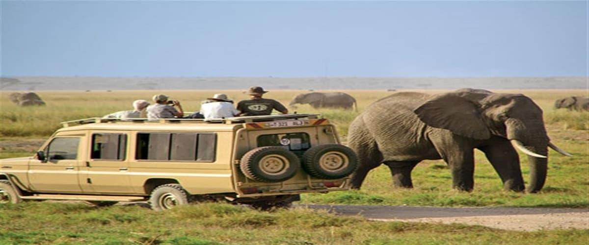 Scoprire la savana in Tanzania