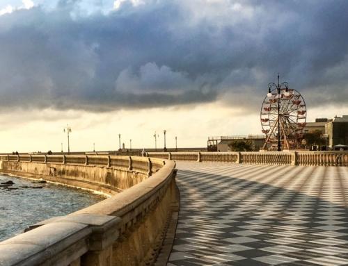 Itinerario multi-sensoriale a Livorno Selezione di attività sensoriali nel raggio di 50Km dalla città